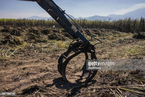 The claw of a loading machine sits in a sugarcane field in the town of San Cayetano in the municipality of Tepic Nayarit state Mexico on Thursday May...
