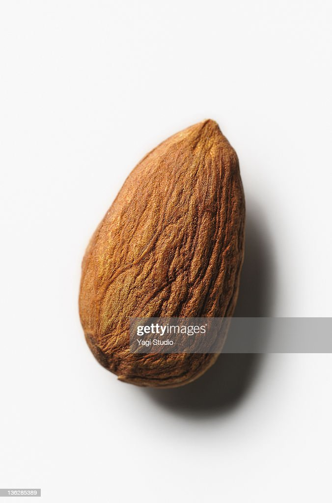 The close-up of the almond : Stock Photo