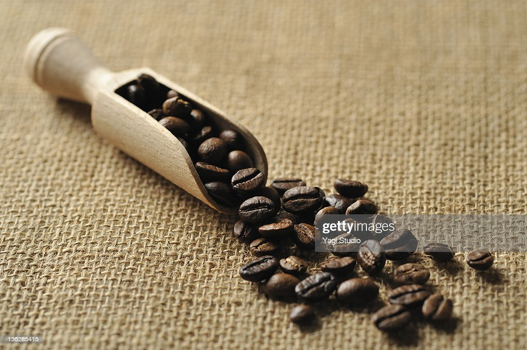 The close-up of the coffee bean : Stock Photo