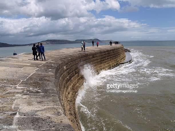 The Cobb Lyme Regis Dorset UK