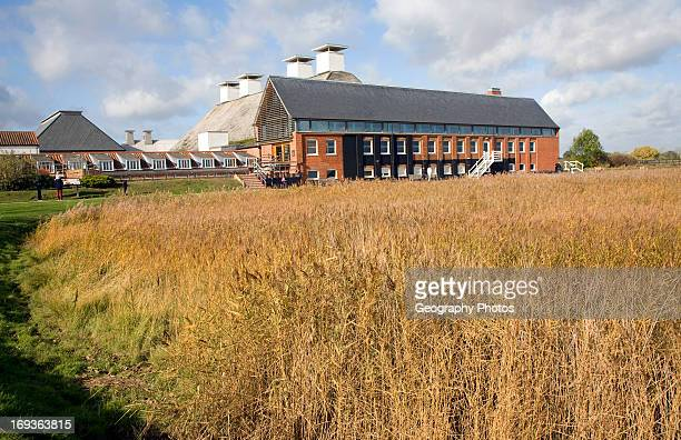 The concert hall viewed over reed beds Snape Maltings Suffolk England