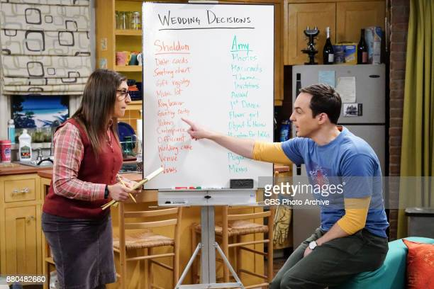 'The Confidence Erosion' Pictured Amy Farrah Fowler and Sheldon Cooper Sheldon and Amy try to eliminate stress from wedding planning by applying math...