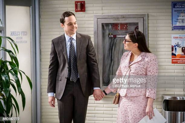 'The Confidence Erosion' Pictured Sheldon Cooper and Amy Farrah Fowler Sheldon and Amy try to eliminate stress from wedding planning by applying math...