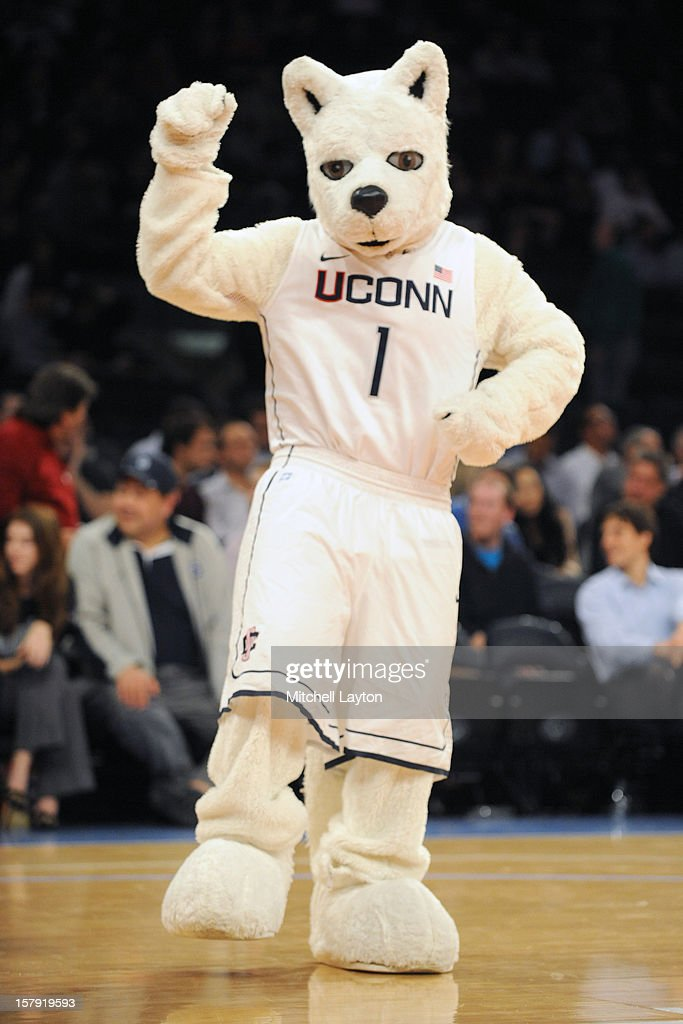 The Connecticut Huskies mascot during the Jimmy V Classic college basketball game against the North Carolina State Wolfpack on December 4, 2012 at Madison Square Garden in New York, New York. The Wolfpack won 69-65.