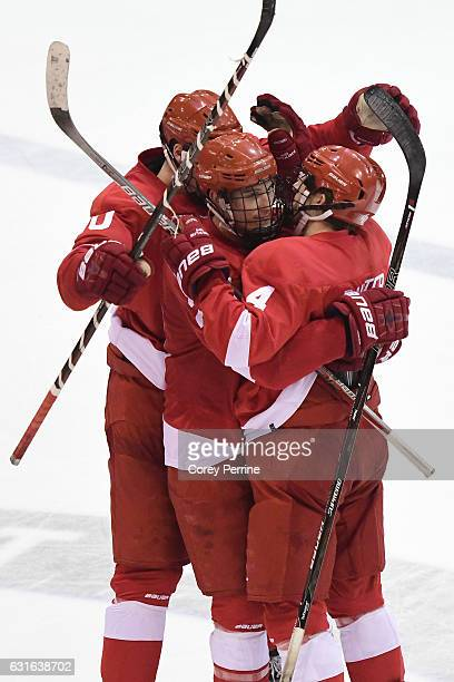 the Cornell Big Red celebrates the final goal of the game against the Princeton Tigers during the third period at Hobey Baker Rink on January 13 2017...