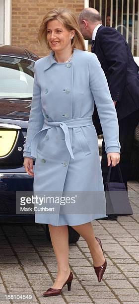 The Countess Of Wessex Attends A Lunch Debate Held By The Wellbeing Of Women Charity At The Royal College OfObstetricians Gynaecologists In London'S...