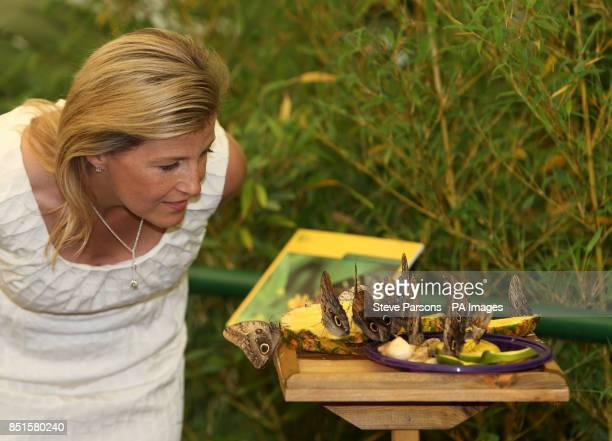 The Countess of Wessex looks at butterflies in the RHS Butterfly Dome with Eden at the RHS Hampton Court Palace Flower Show East Molesey Surrey