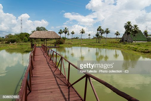 The country seen from the bridge : Stock Photo