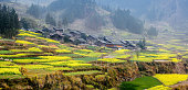 the countryside of guizhou