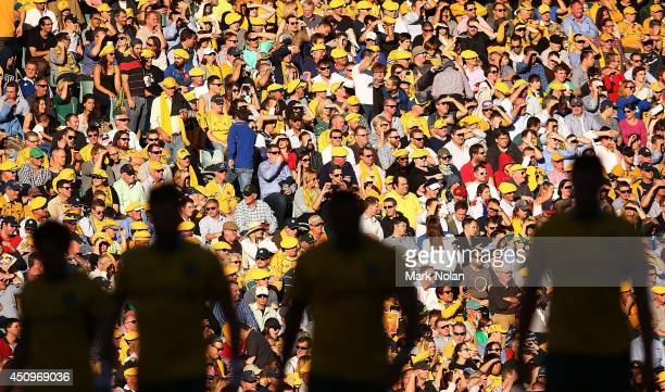 The Crowd watches on during the International Test match between the Australia Wallabies and France at Allianz Stadium on June 21 2014 in Sydney...