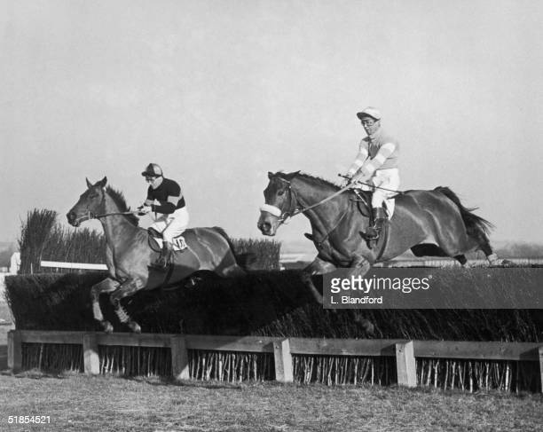 The Dabster with F Winters up takes the last jump in the Elcot Park Steeplechase along with Never Say When ridden by future bestselling author Dick...