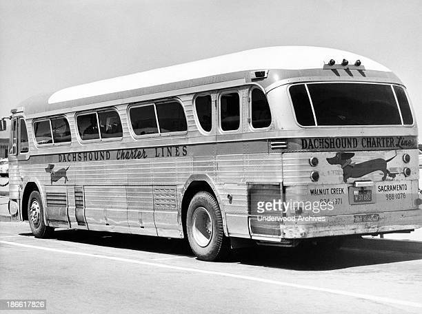 The Dachshound Charter Bus Line which scurried between Walnut Creek and Sacramento California late 1950s