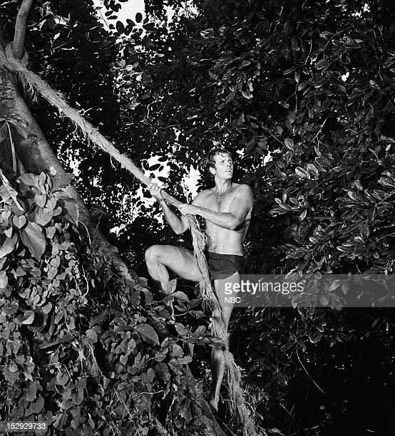 TARZAN 'The Deadly Silence Part 1 2' Episodes 8 9 Pictured Ron Ely as Tarzan
