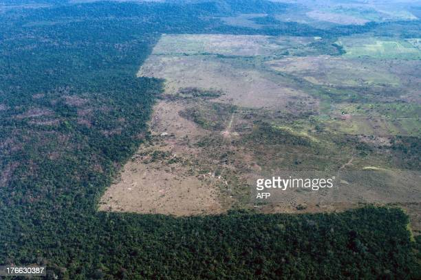 The deforestation area stops at the border of Indio's reservation area in Para state northern Brazil on August 9 2013 AFP PHOTO / YASUYOSHI CHIBA