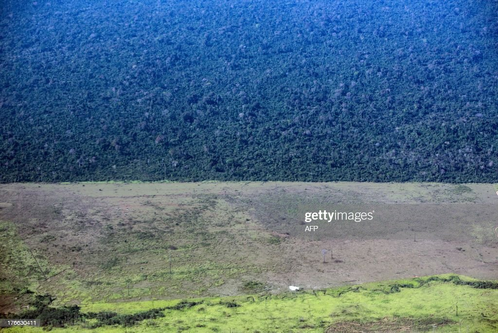 The deforestation area stops at the border of Indio's reservation area in Para state, northern Brazil, on August 9, 2013. AFP PHOTO / YASUYOSHI CHIBA