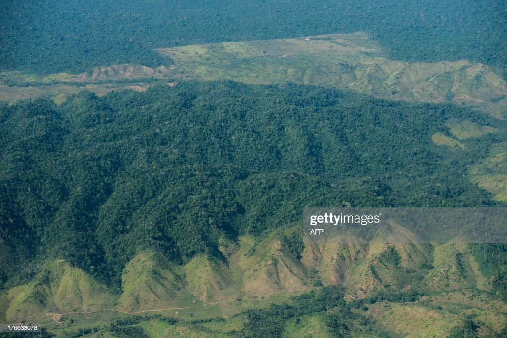 The deforestation area stops at the border of Indio's reservation area in Para state, northern Brazil, on August 9, 2013.