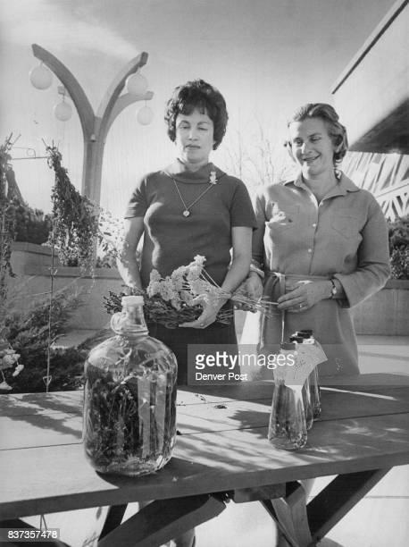 The Denver Botanic Gardens Guild's sale of herbflavored and tarragonflavored vinegars is under way Mrs Charles Parker left and Mrs John Falhenberg...