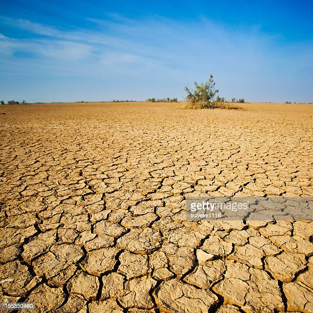 Oeste do deserto na Índia