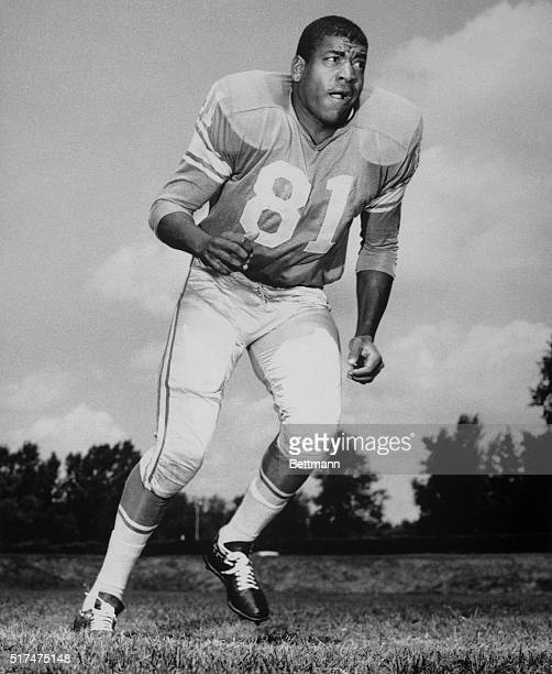 The Detroit Lions of the National football League cut three players on September 7th including veteran defensive back Dick Lane shown in this 1964...
