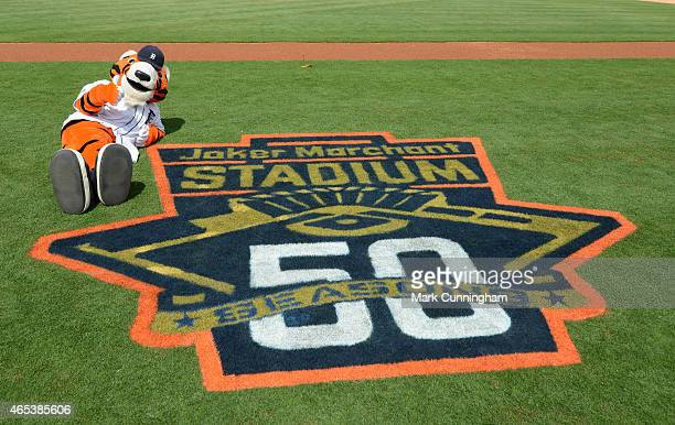 The Detroit Tigers mascot Paws sits on the field next to the 50th Anniversary logo painted on the field prior to the Spring Training game against the...