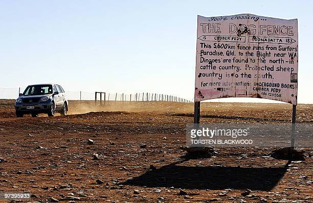 The Dingo Fence divides the desolate stony outback landscape known as Moon Plain on the edge of the Simpson Desert 05 July 2005 The 5600 kilometre...