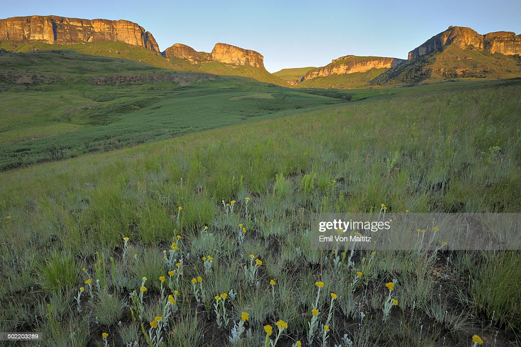 The Dooley Flats of the Drakensberg mountains.