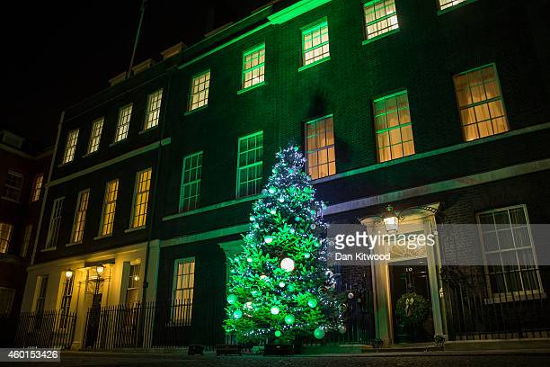 The Downing Street's Christmas tree is lit at 10 Downing Street on December 8 2014 in London England Oxfordshire tree Colin Griffith from Dinmore...