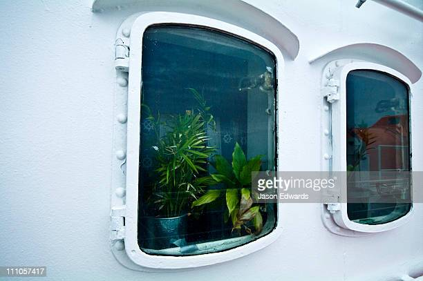 Indoor plants growing on the windowsill of an Antarctic ships porthole