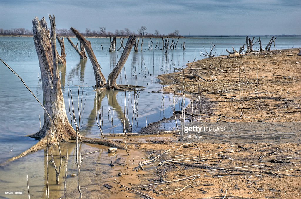 CONTENT] The drought in North Texas has drained significant amounts of water from Lake Lewisville (near Dallas) and has exposed tree trunks that were once submerged. The shoreline has receded by dozens of feet from the bank and the drought has severely affecting boating and fishing.