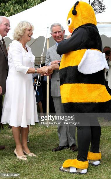 The Duchess of Cornwall and The Prince of Wales meet a man dressed as a Bumble Bee during a tour of the Sandringham Flower Show Norfolk