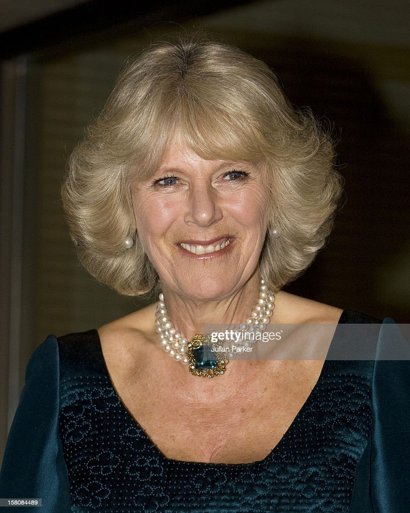 The Duchess Of Cornwall Attends A Dinner With The Prince Of Wales, Emperor Akihito, And Empress Michiko At The Imperial Palace In Tokyo On The First Day Of Their Tour Of Japan.