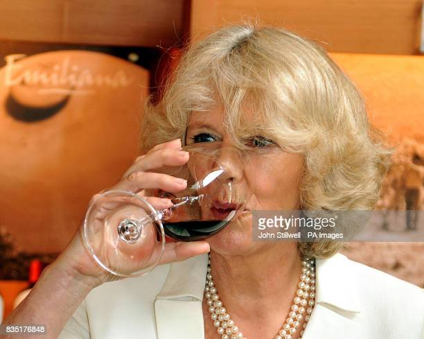 The Duchess of Cornwall drinks a glass of red Chilean wine during a visit to a Vineyard in the south American country