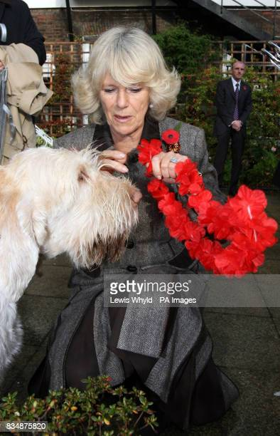 The Duchess of Cornwall puts a garland on a dog during a charity celebration of the Nepalese 'Day of the Dog' in the garden of the Royal OverSeas...