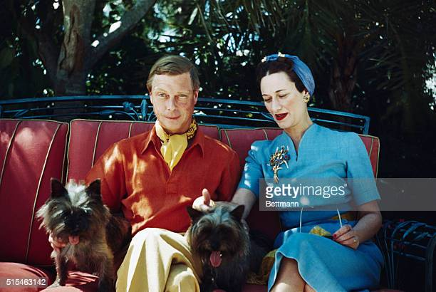 The Duke and Duchess of Windsor seated outdoors with two small dogs