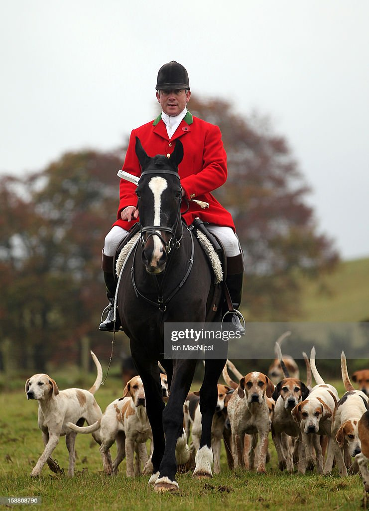The Duke of Buccleugh's Fox hounds are lead by Master of the Hounds Trevor Adams to take part in a fox hunt on November 08, 2011 in St Boswells, Scotland.