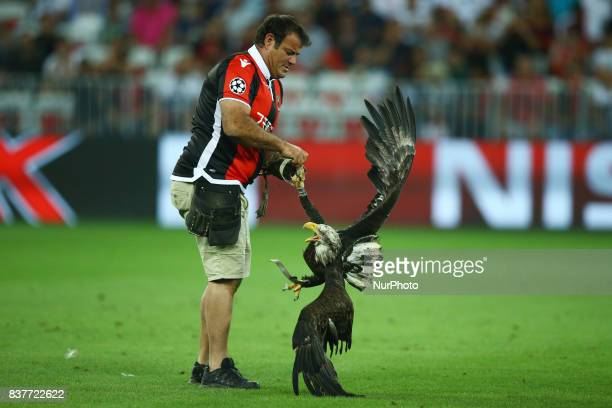 The eagle mascotte of Nice club with the trainer during the UEFA Champions League Qualifying PlayOffs round second leg match between OGC Nice and SSC...