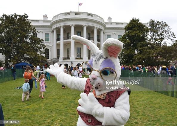 The Easter Bunny is seen on the South Lawn during the annual Easter Egg Roll on April 1 2013 of the White House in Washington DC AFP PHOTO/Mandel NGAN