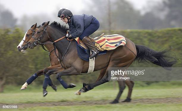 The Ed Dunlop trained Ouija Board works with False Promise on the gallops at Newmarket on April 13 2005 in Newmarket England