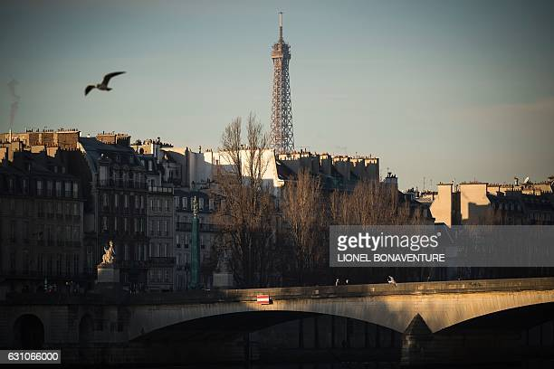 The Eiffel tower is pictured from the river Seine at sunrise on January 6 2017 in Paris / AFP / LIONEL BONAVENTURE