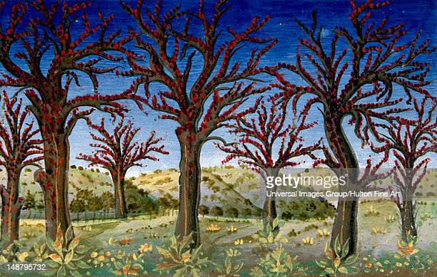 The end of the world and the Last Judgement The trees will covered with blood Codex of Predis Royal Library Turin Italy