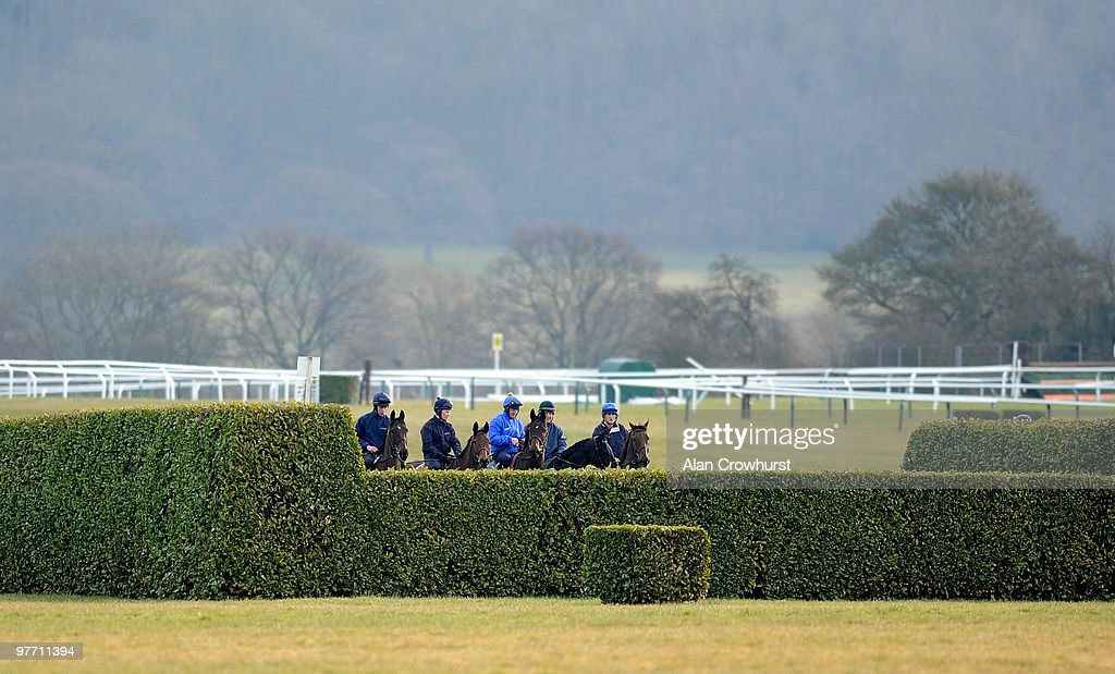 The Enda Bolger team check out a cross country fence at Cheltenham racecourse on March 15 2010 in Cheltenham England
