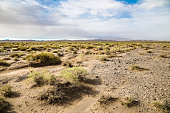 The endless Gobi Desert.