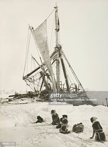 The 'Endurance' crushed by the ice and sinking during the Imperial TransAntarctic Expedition 191417 led by Ernest Shackleton
