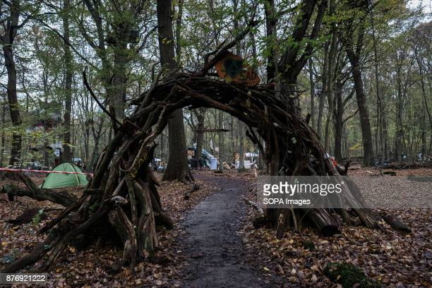 The entrance to Galleon the biggest settlement in the woods Starting in 2012 the Hambach Forest occupation settlements have slowed the expansion of...