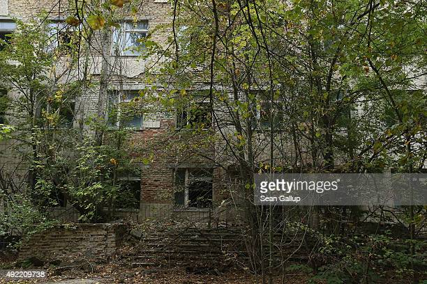The entrance to the former city hospital stands nearly obscured by overgrown trees on September 30 2015 in Pripyat Ukraine Pripyat lies only a few...