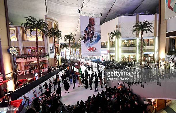 The European Premiere of Paramount Pictures' 'xXx Return of Xander Cage' on January 10 2017 in London United Kingdom