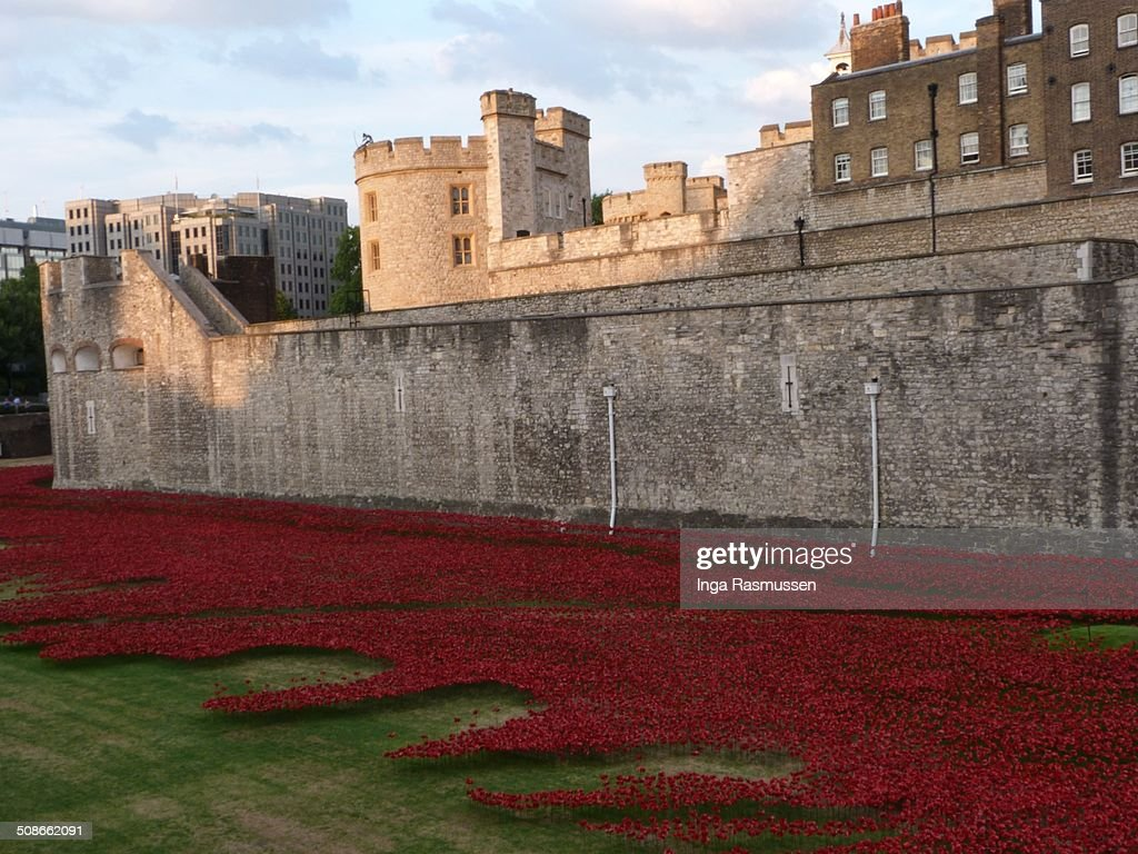 The evolving installation 'Bloodswept Lands and Seas of Red' marking the centenary of the outbreak of the First World War at Tower of London, United Kingdom. 888,246 ceramic poppies will progressively fill the Tower's famous moat.