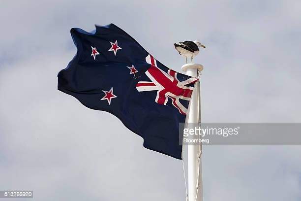 The existing New Zealand flag flies as a seagull stands on top of the flag pole in Auckland New Zealand on Wednesday March 2 2016 New Zealanders will...