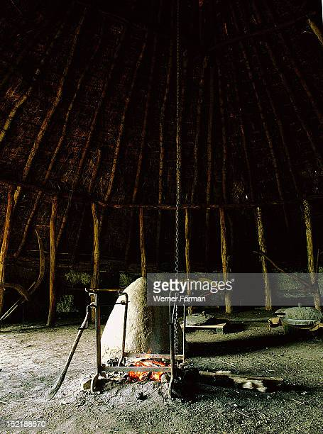 The experimental farm of Little Butser in Hampshire The interior of an exact replica of an Iron Age dwelling The frame of the house is constucted...