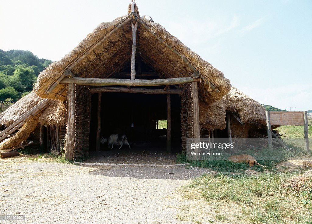 The experimental farm of Little Butser in Hampshire,The exterior of an exact replica of a large Iron Age House. The frame is constructed from tree trunks, the roof is thatched and the walls are of mud and wattle. View of the entrance to the hut. Britain. Celtic. Iron Age.